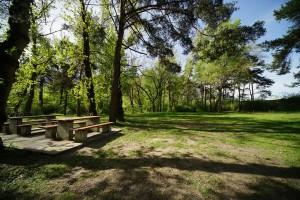 Camping-Sedunum-Camping-0013