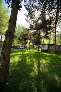 Camping-Sedunum-Camping-0030